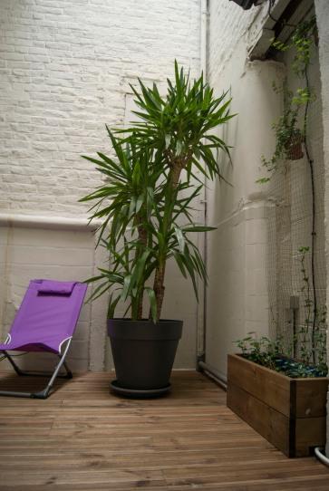 Terrasse intérieur avec végétation